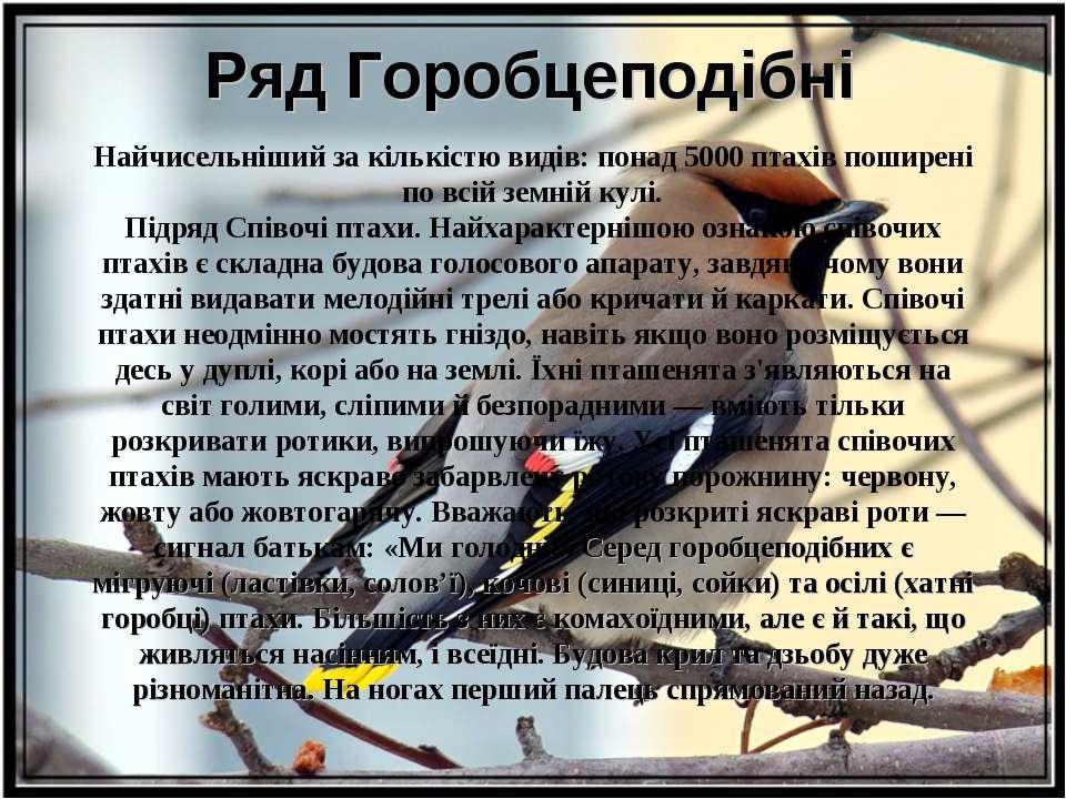 Ряд Горобцеподібні Найчисельніший за кількістю видів: понад 5000 птахів пошир...