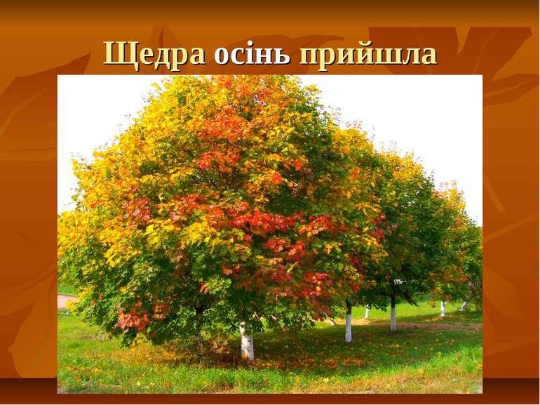 Щедра осінь прийшла