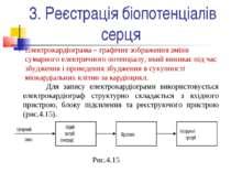 3. Реєстрація біопотенціалів серця Електрокардіограма – графічне зображення з...