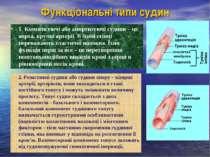 Функціональні типи судин 1. Компенсуючі або амортизуючі судини – це аорта, кр...