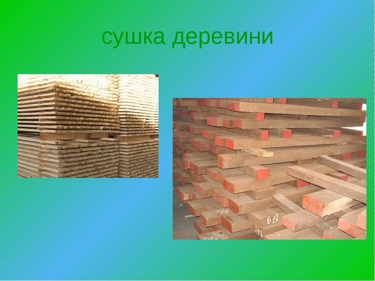сушка деревини