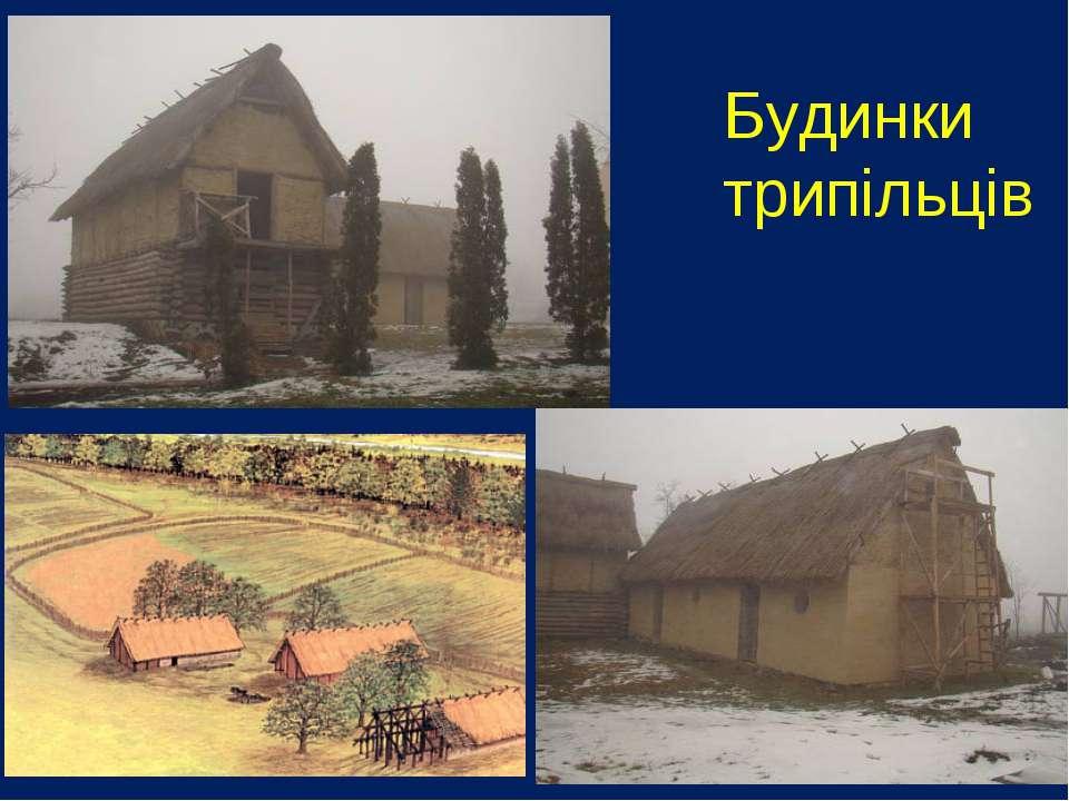 Будинки трипільців