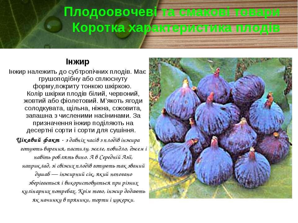 Плодоовочеві та смакові товари Коротка характеристика плодів Інжир Інжир нале...