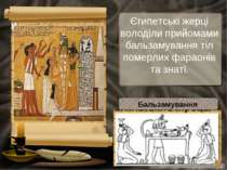 Єгипетські жерці володіли прийомами бальзамування тіл померлих фараонів та зн...