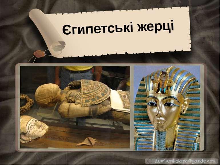 Єгипетські жерці