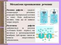 Пасивна дифузія - градієнт концентрації речовини всередині бактеріальної кліт...