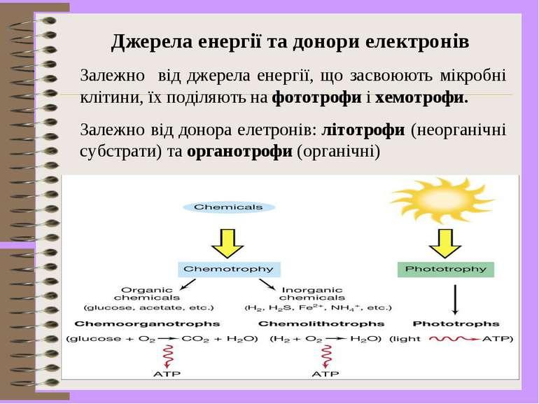 Джерела енергії та донори електронів Залежно від джерела енергії, що засвоюют...