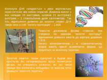 Молекула ДНК складається з двох вертикально переплетиних між собою спіралей. ...