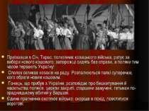 Приїхавши в Січ, Тарас, полковник козацького війська, ратує за вибори нового ...