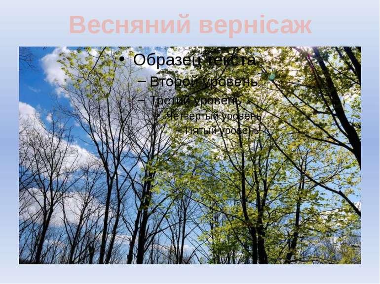 Весняний вернісаж