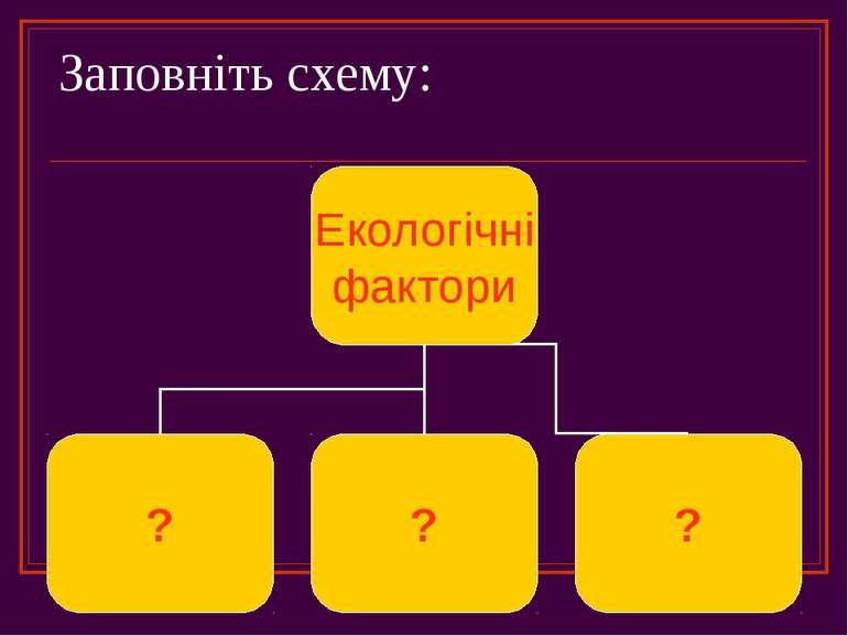 Заповніть схему:
