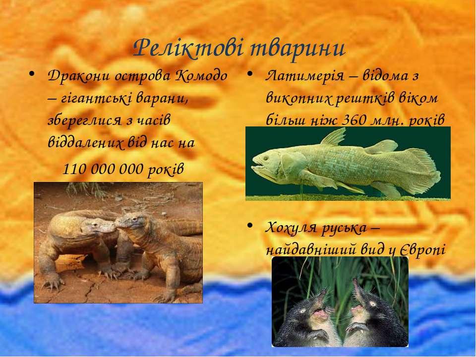 Реліктові тварини Дракони острова Комодо – гігантські варани, збереглися з ча...