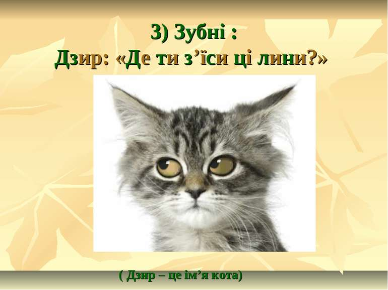 3) Зубні : Дзир: «Де ти з'їси ці лини?» ( Дзир – це ім'я кота)
