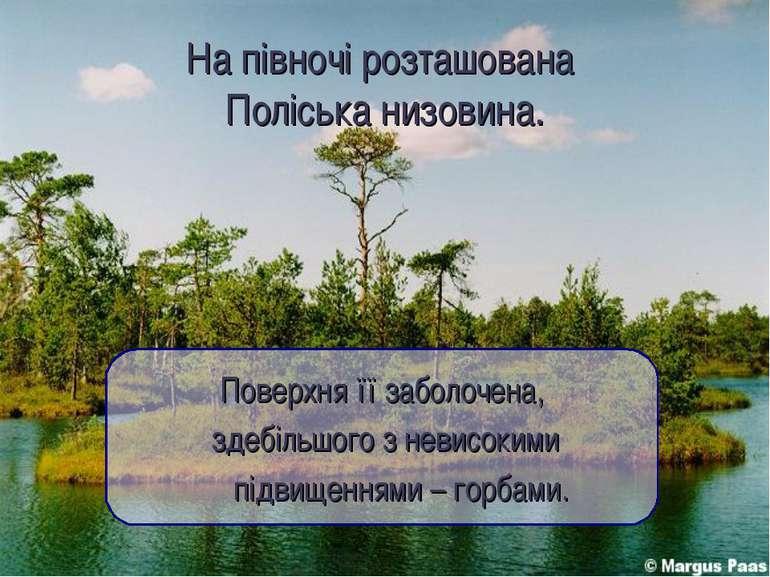 На півночі розташована Поліська низовина. Поверхня її заболочена, здебільшого...