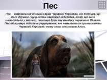 Пес Пес – мимовільний спільник армії Червоної Королеви, він боїться, що його ...