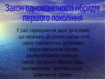 У разі схрещування двох організмів, що належать до різних чистих ліній (двох ...