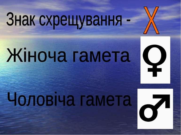 Знак схрещування -Х Жіноча гамета Чоловіча гамета