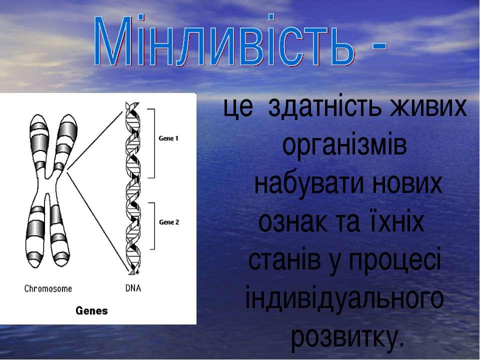 це здатність живих організмів набувати нових ознак та їхніх станів у процесі ...