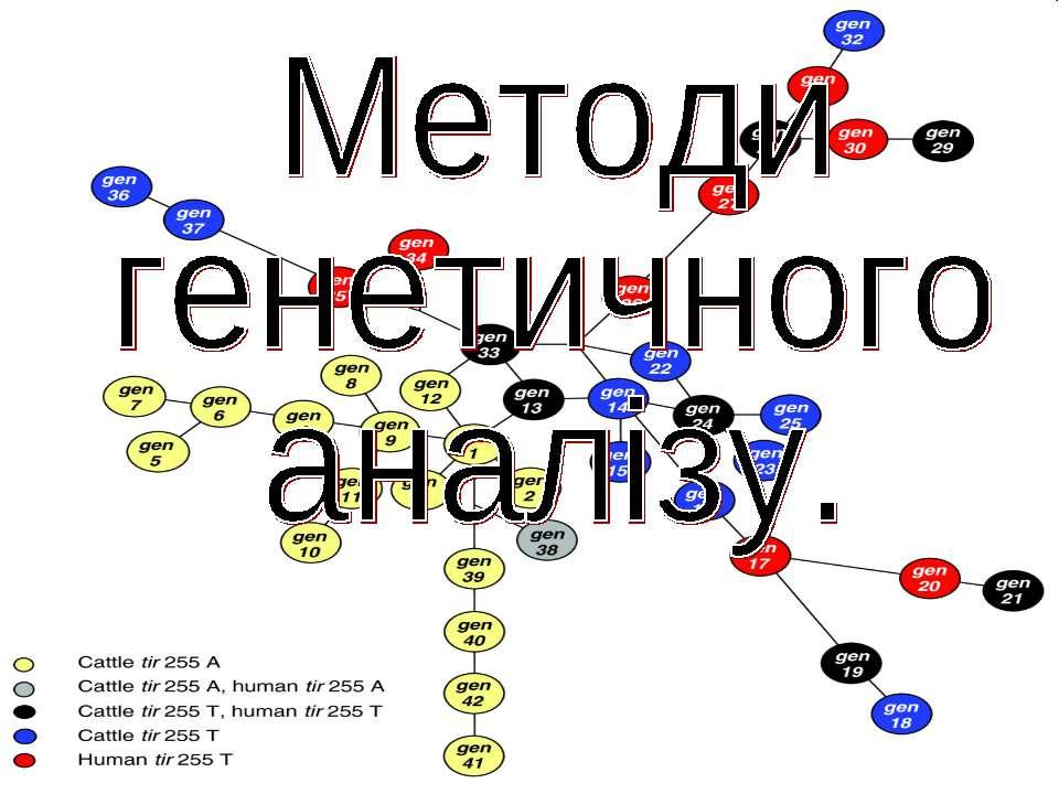 Методи генетичного аналізу.