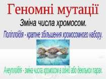 Геномні мутації Зміна числа хромосом. Поліплоїдія - кратне збільшення хромосо...
