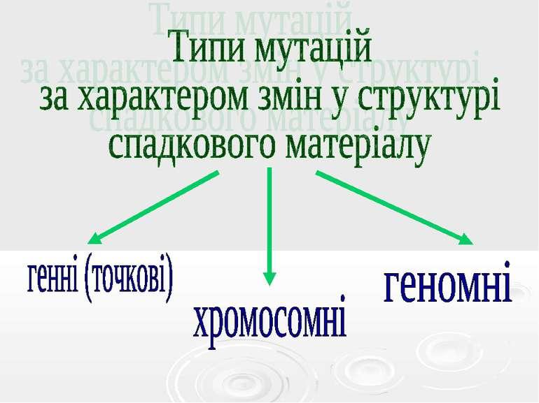 Типи мутацій за характером змін у структурі спадкового матеріалу
