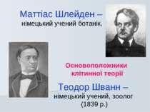 Основоположники клітинної теорії Маттіас Шлейден – німецький учений ботанік, ...