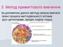3. Метод прижиттєвого вивчення. За допомогою даного методу можна вивчати певн...