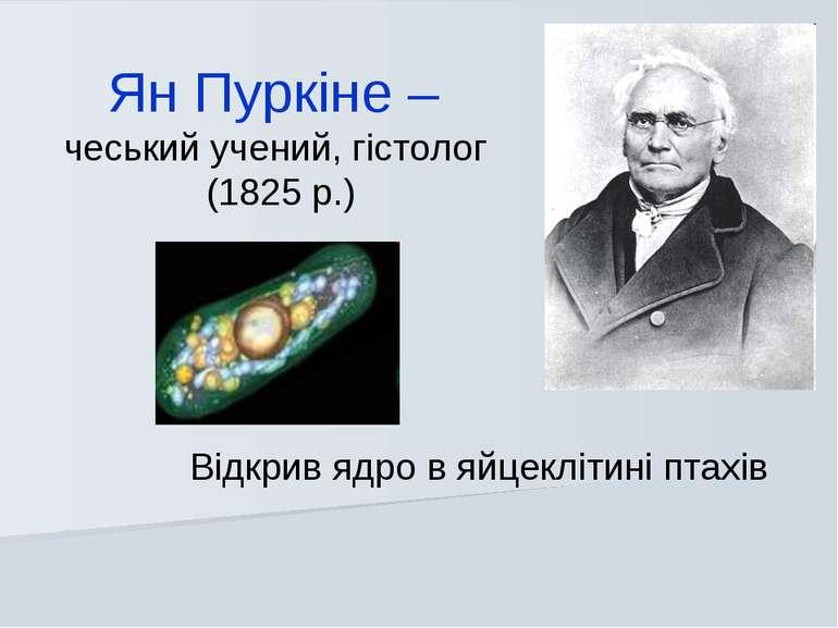 Відкрив ядро в яйцеклітині птахів Ян Пуркіне – чеський учений, гістолог (1825...