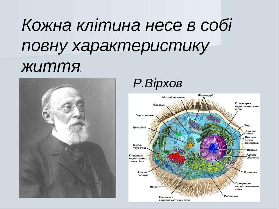 Кожна клітина несе в собі повну характеристику життя. Р.Вірхов