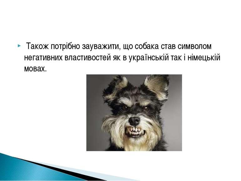 Також потрібно зауважити, що собака став символом негативних властивостей як ...