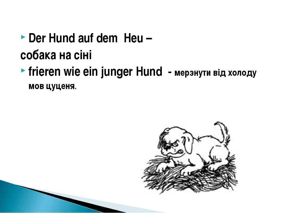 Der Hund auf dem Heu – собака на сіні frieren wie ein junger Hund - мерзнути ...