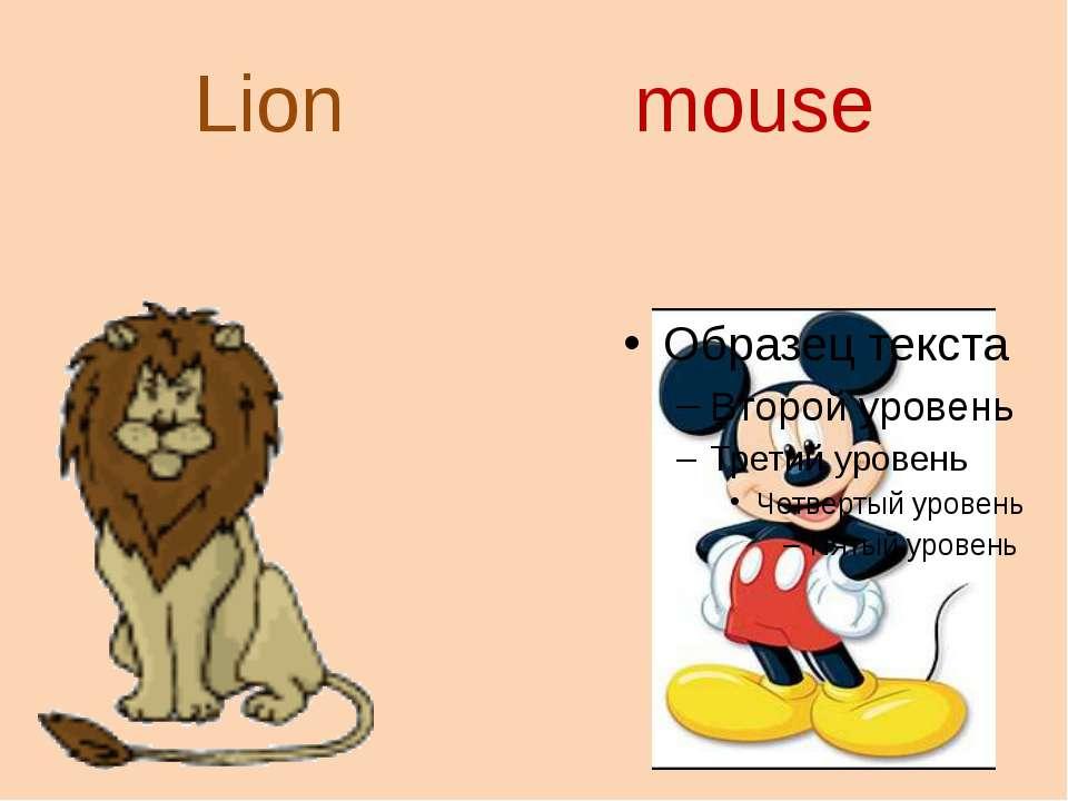 Lion mouse