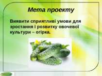 Мета проекту Виявити сприятливі умови для зростання і розвитку овочевої культ...