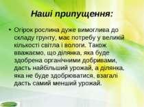 Наші припущення: Огірок рослина дуже вимоглива до складу грунту, має потребу ...