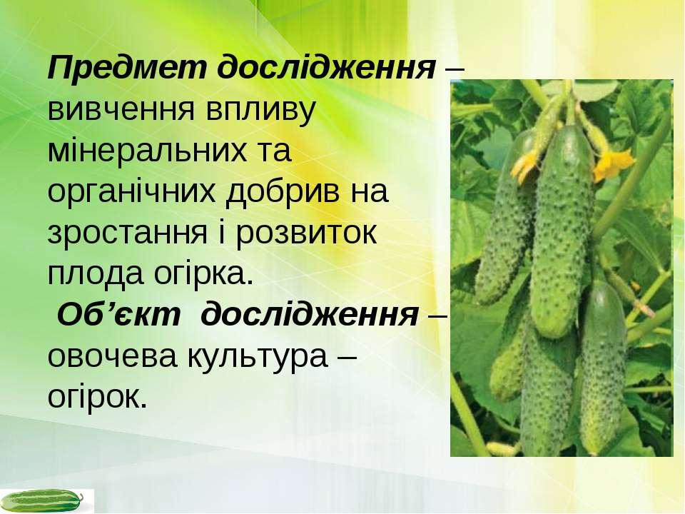 Предмет дослідження – вивчення впливу мінеральних та органічних добрив на зро...