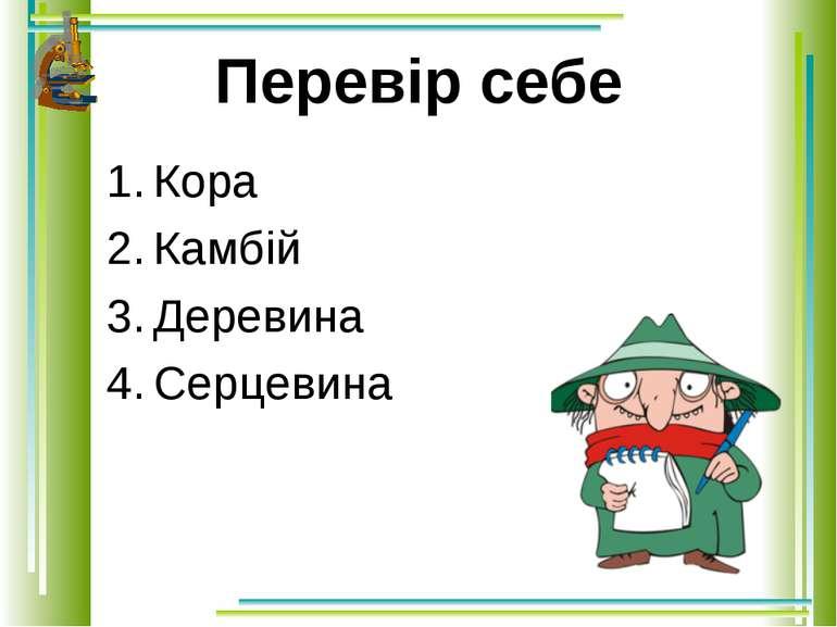 Перевір себе Кора Камбій Деревина Серцевина