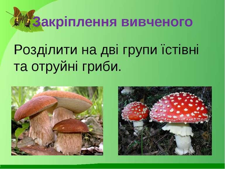 Закріплення вивченого Розділити на дві групи їстівні та отруйні гриби.