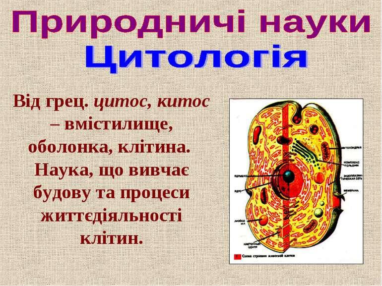 Від грец. цитос, китос – вмістилище, оболонка, клітина. Наука, що вивчає будо...
