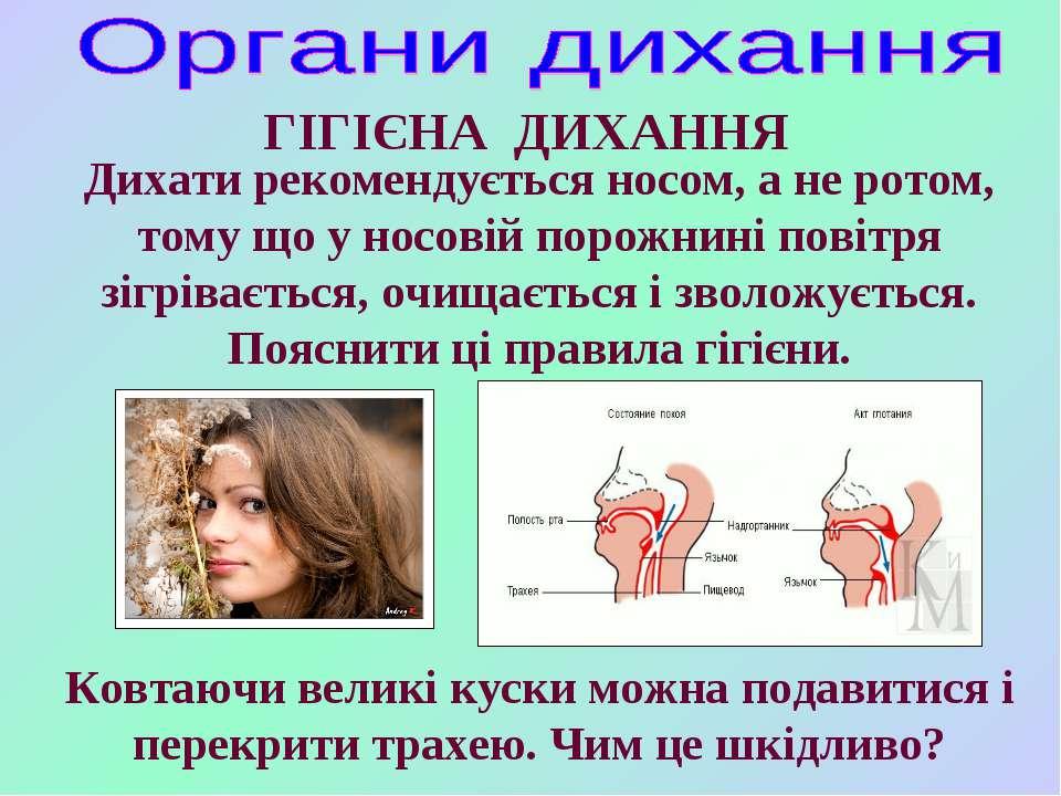 ГІГІЄНА ДИХАННЯ Дихати рекомендується носом, а не ротом, тому що у носовій по...