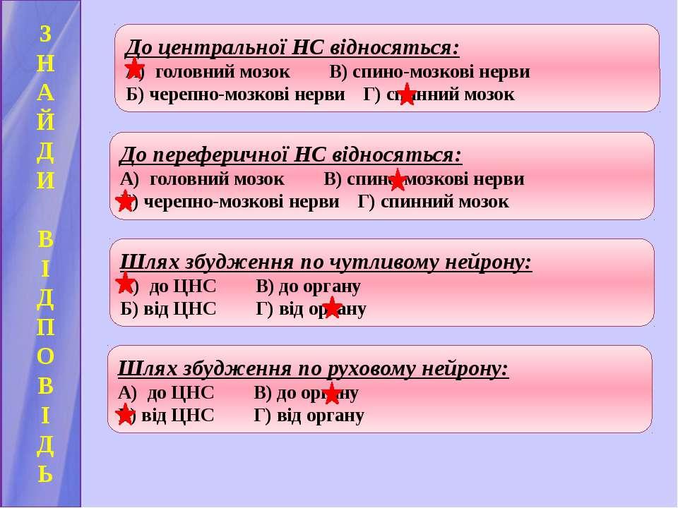 З Н А Й Д И В І Д П О В І Д Ь До центральної НС відносяться: А) головний мозо...
