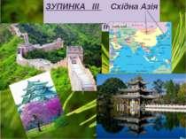 ЗУПИНКА ІІІ Східна Азія Клас Гінкгові