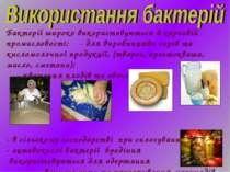 Бактерії широко використовуються в харчовій промисловості: - для виробництва ...