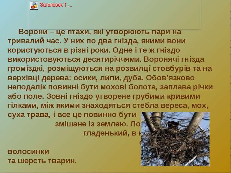 Ворони – це птахи, які утворюють пари на тривалий час. У них по два гнізда, я...