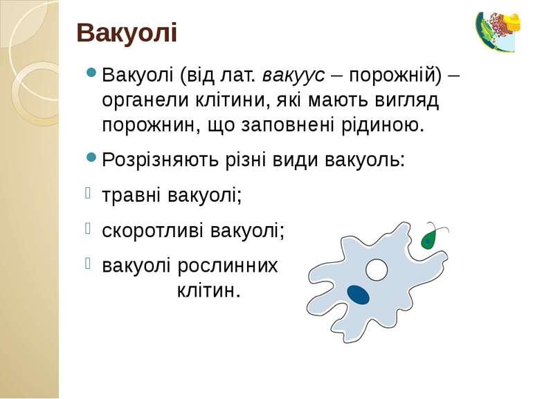 Вакуолі (від лат. вакуус – порожній) – органели клітини, які мають вигляд пор...