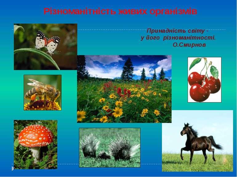 Різноманітність живих організмів Принадність світу - у його різноманітності. ...
