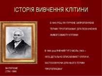 ІСТОРІЯ ВИВЧЕННЯ КЛІТИНИ ЯН ПУРКІНЕ (1784 -1896 В 1840 РОЦІ ЯН ПУРКІНЕ ЗАПРОП...