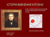 ІСТОРІЯ ВИВЧЕННЯ КЛІТИНИ РОБЕРТ БРОУН (1773 -1858 р) В 1831 р. РОБЕРТ БРОУН,Ш...