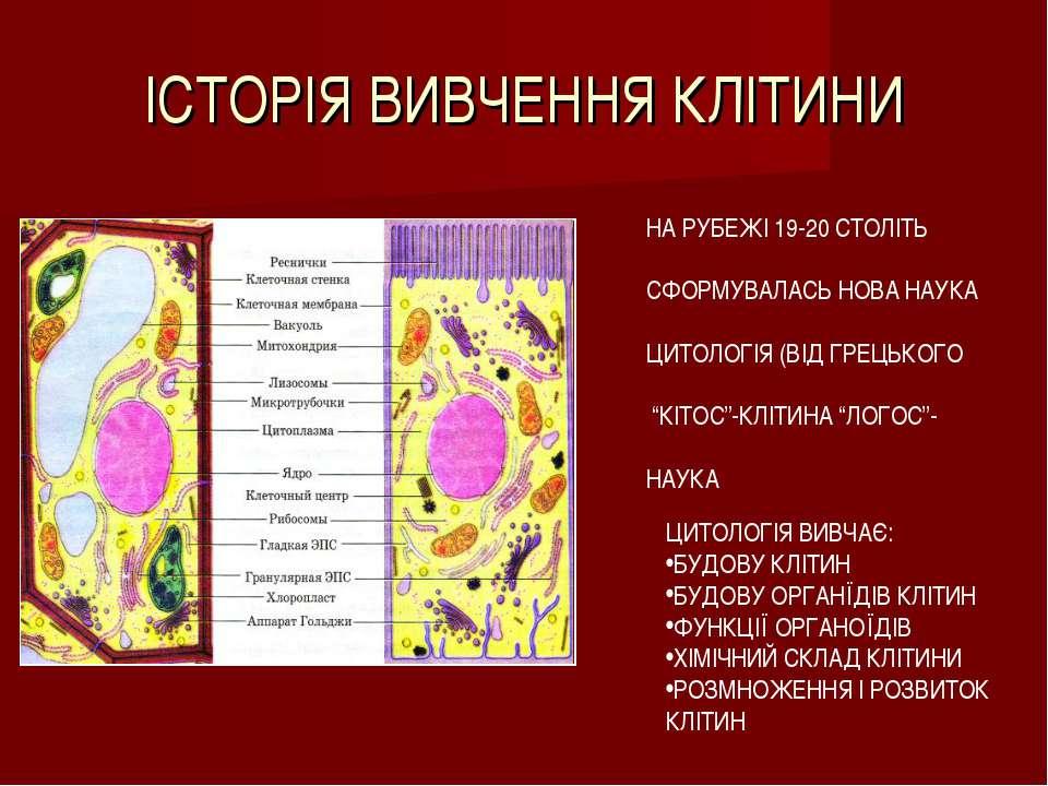 ІСТОРІЯ ВИВЧЕННЯ КЛІТИНИ НА РУБЕЖІ 19-20 СТОЛІТЬ СФОРМУВАЛАСЬ НОВА НАУКА ЦИТО...
