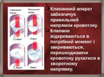 Клапанний апарат забезпечує правильний напрямок кровотоку. Клапани відкривают...