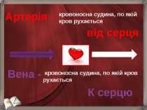 Артерія - кровоносна судина, по якій кров рухається від серця кровоносна суди...